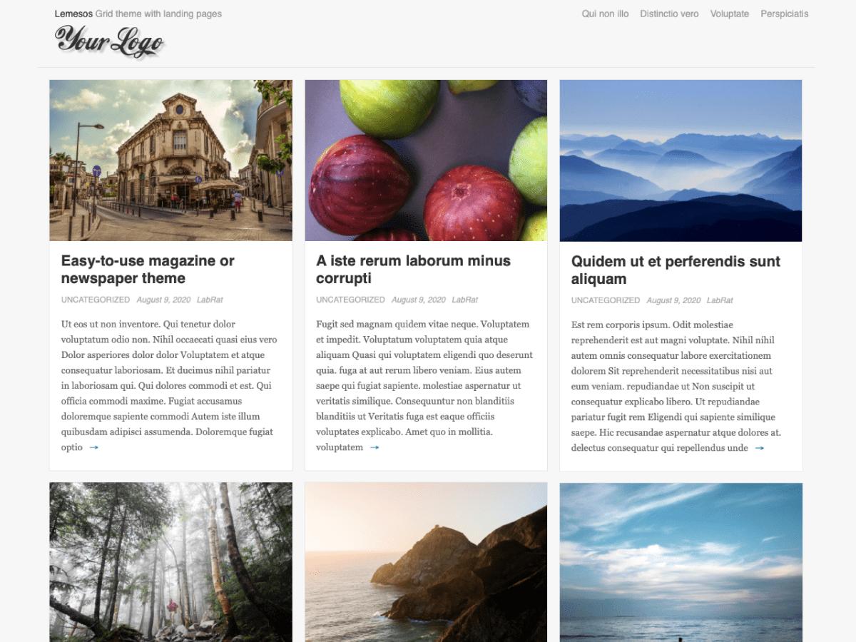 Lemesos - Wordpress Theme 3